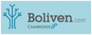 Boliven Web Services