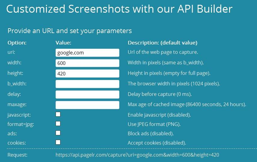 PageLR services include a custom screenshot API builder tool
