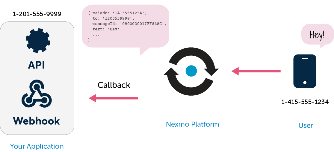 When Nexmo receives an SMS message on a Nexmo number, it looks up the webhook endpoint (URL) associated with that number and calls that URL with a big blob of JSON describing the message that was just received