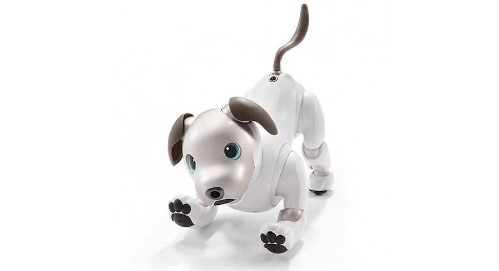 Sony Aibo ERS-1000 is the most recent Aibo model