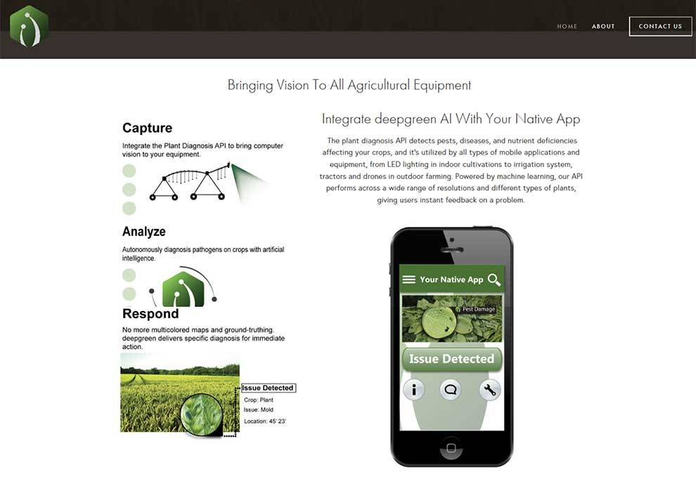 Detect problems with agriculture via the deepgreen Plant Diagnosis API