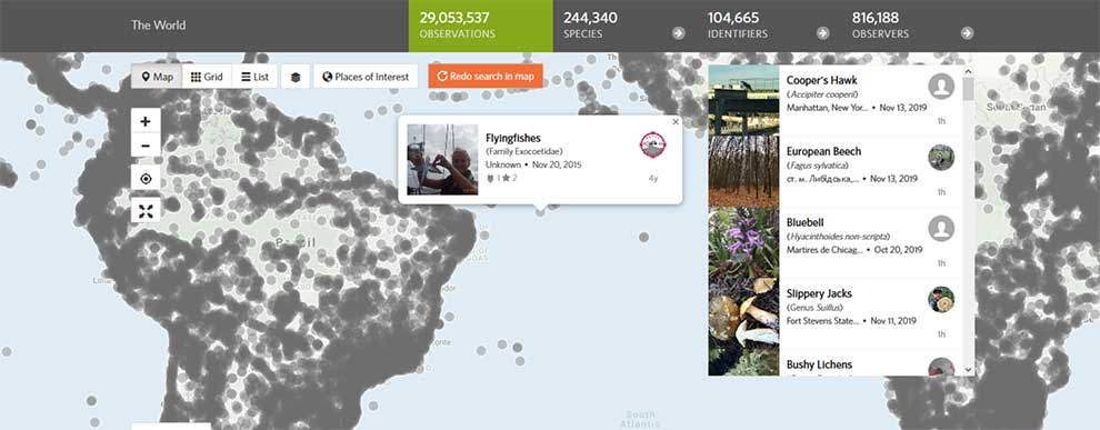 Get data from thousands of nature observations with this API