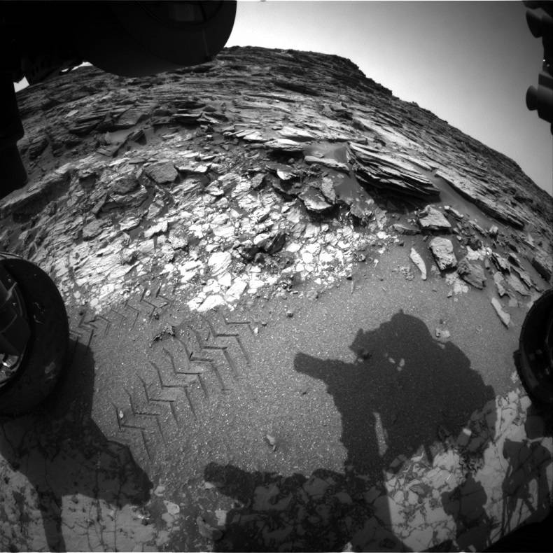 Calls to this API return images taken by NASA Mars Rover