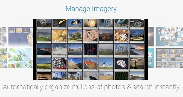 Netra API for search and organizing images
