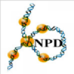 Nuclear Protein Database