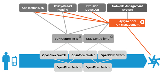 API Management for the Software-Defined Network