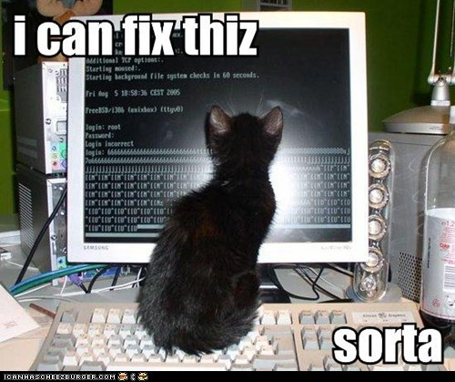 cat can fix cheezburger launches new api lolcats, memes and funny pictures,Cheezburger Memes